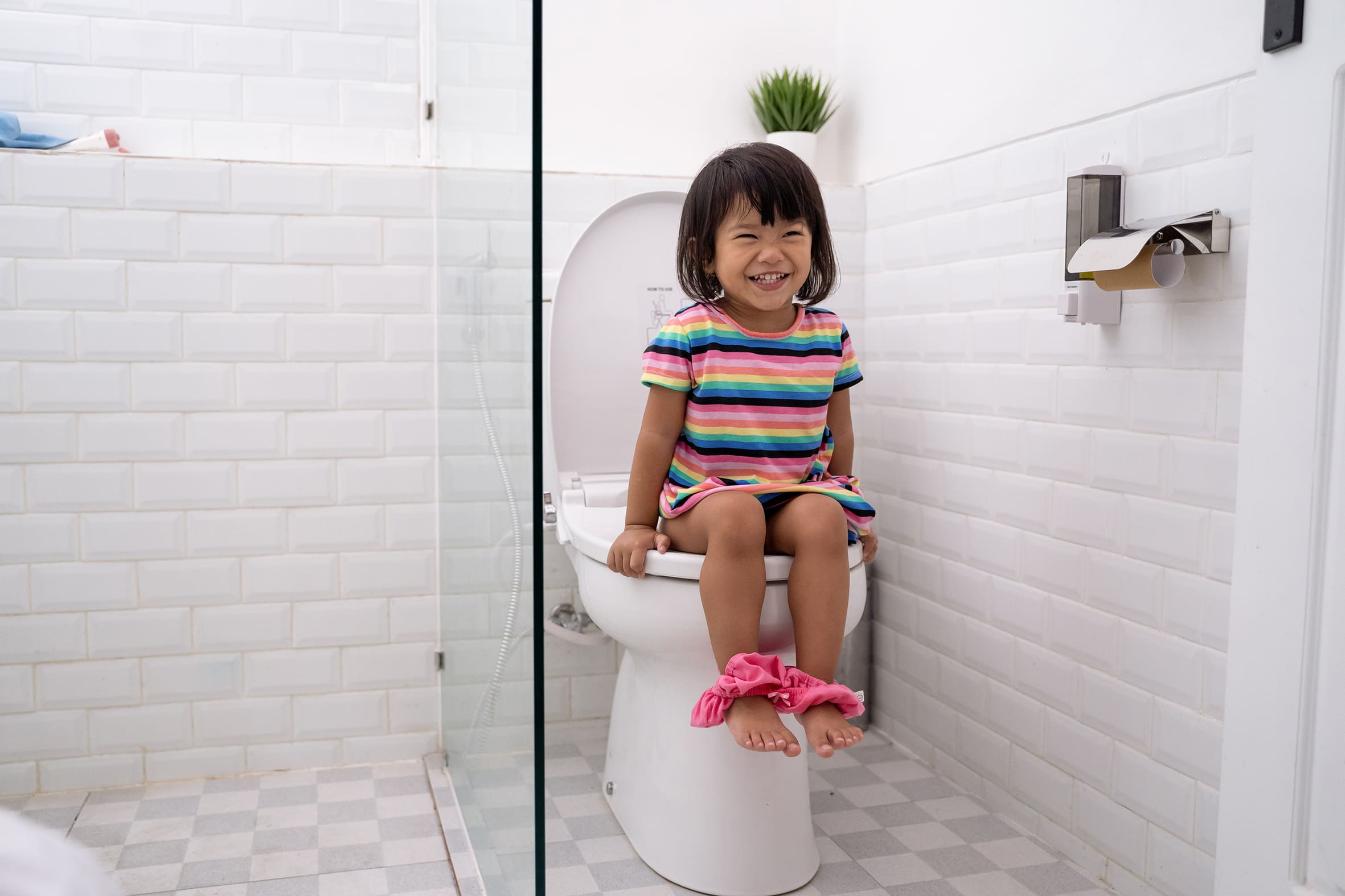 Cara Toilet Training Anak
